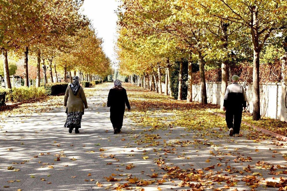 Karatay'da Sonbahar Güzelliği