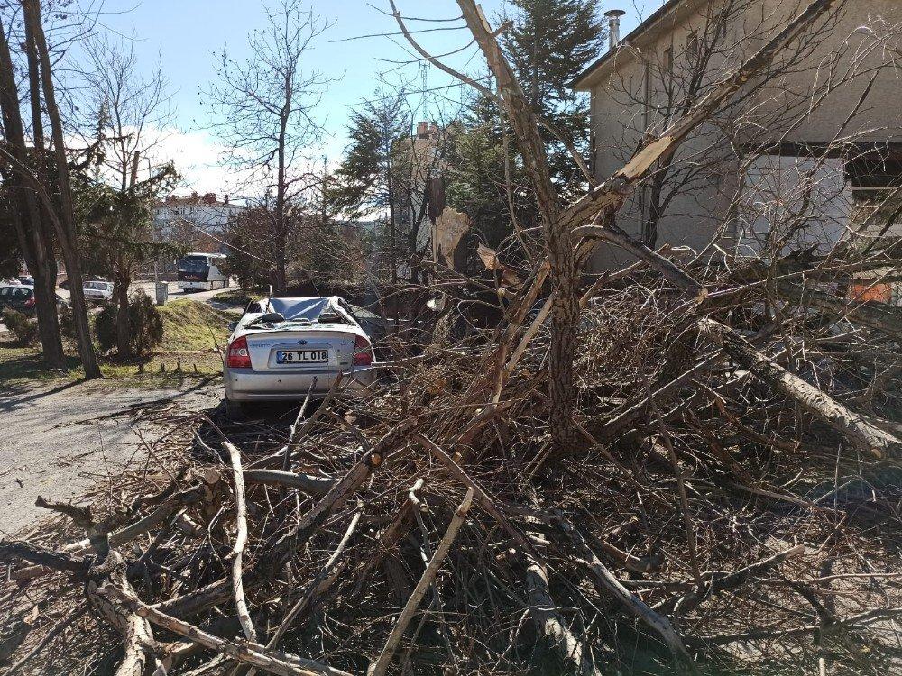 Eskişehir'de Rüzgârın Şiddeti Saate 89 Kilometreye Ulaştı
